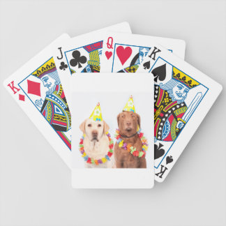 dogs bicycle playing cards