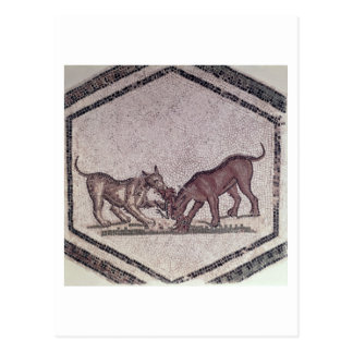 Dogs Fighting for a Bird, Roman, 2nd-3rd century ( Postcard