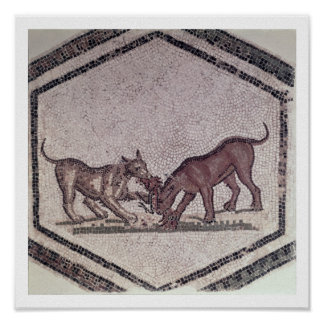 Dogs Fighting for a Bird Roman 2nd-3rd century Poster
