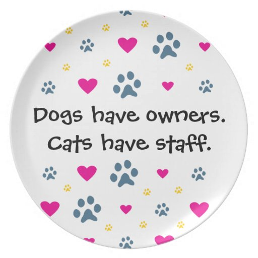 Dogs Have Owners But Cats Have Staff