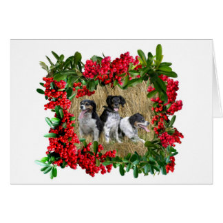 Dogs in Pyracantha Berries New Greeting Card