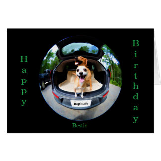 Dog's Life Fish-eye Lens Cute Funny Birthday Card