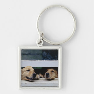 Dogs Looking Out a Window Silver-Colored Square Key Ring