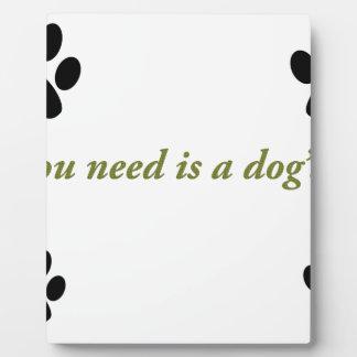 Dogs love plaque