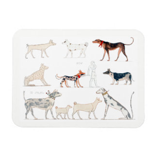 Dogs of Ancient Egypt Magnet