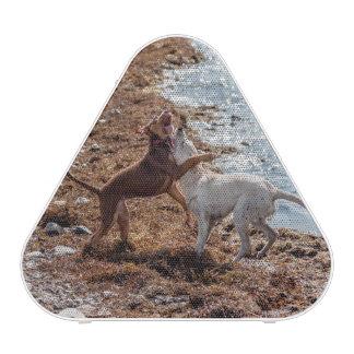 Dogs on beach bluetooth speaker