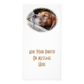 DOGS PHOTO GREETING CARD