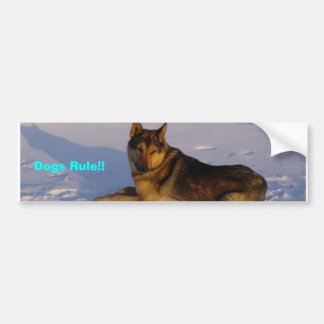 Dogs Rule!! Bumper Sticker