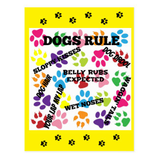 Dogs Rule Colorful Paw Prints Postcard