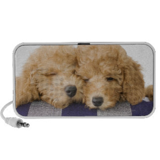 Dogs iPod Speaker