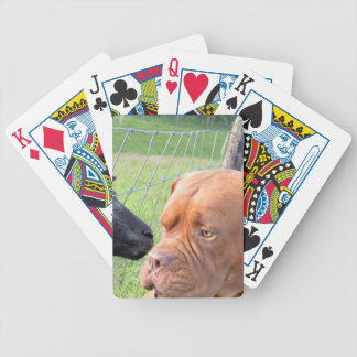 Dogue de Bordeaux Bicycle Playing Cards