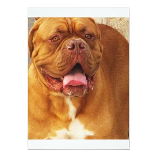 Dogue de Bordeaux French mastiff 13 Cm X 18 Cm Invitation Card