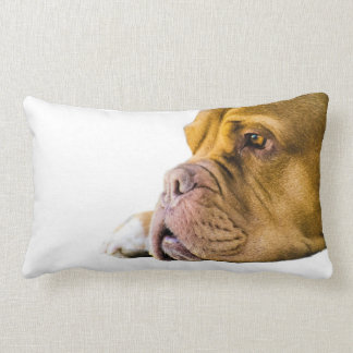 Dogue de Bordeaux Lumbar Pillow