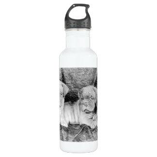 Dogue de Bordeaux puppies 710 Ml Water Bottle