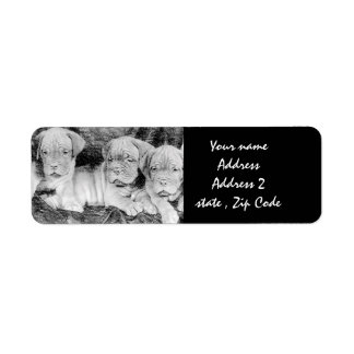 Dogue de bordeaux puppies Address labels