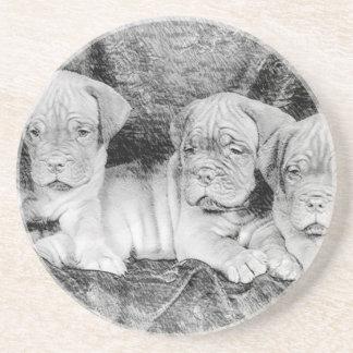 Dogue de Bordeaux puppies Beverage Coaster