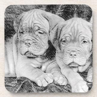 Dogue de bordeaux puppies drink coaster