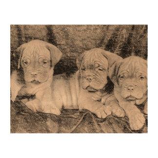 Dogue de Bordeaux puppies Cork Paper