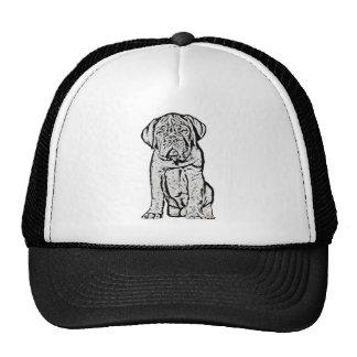 Dogue de Bordeaux puppy hat