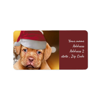 Dogue de Bordeaux puppy mailing labels