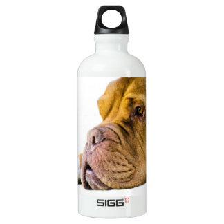 Dogue de Bordeaux SIGG Traveller 0.6L Water Bottle
