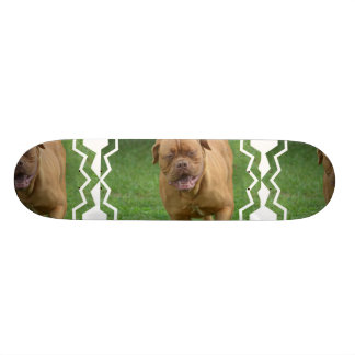 Dogue de Bordeaux Skate Board
