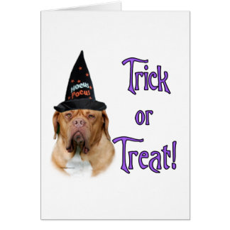 Dogue de Bordeaux Trick Card