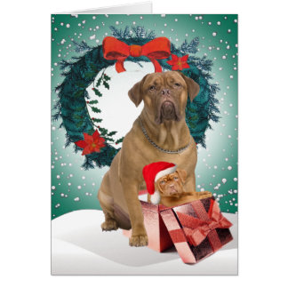 Dogue De BordeauxChristmas Gift Cards