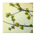 Dogwood Blossoms Ceramic Tile