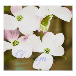 Dogwood Floral Expression Poster
