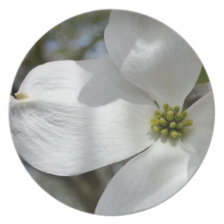 Dogwood Flower Party Plates