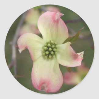 Dogwood Flower Round Sticker