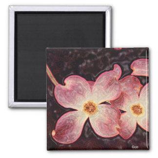 dogwood flower square magnet