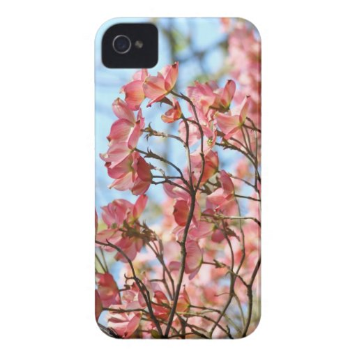 Dogwood Flowers Pink Blackberry Bold cases gifts