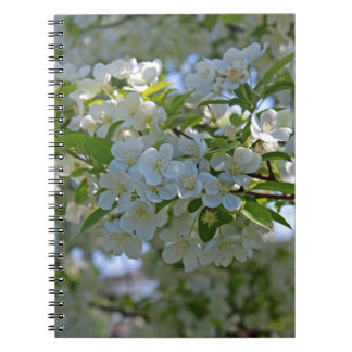 Dogwood Notebook