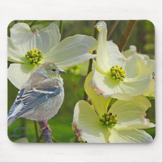 """Dogwood Visitor"" Finch Songbird - Mouse Pad"