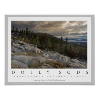 Dolly Sods Wilderness Area  West Virginia Poster