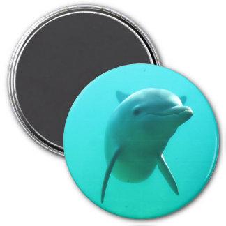 Dolphin 7.5 Cm Round Magnet