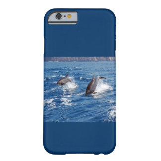 Dolphin Adventure iPhone 4 Cover