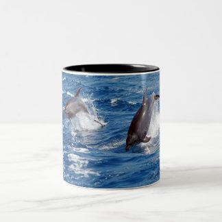 Dolphin Adventure Two-Tone Coffee Mug