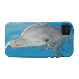 Dolphin always have a smile case for the iPhone 4