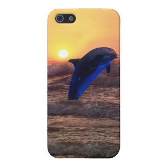 Dolphin at sunset iPhone 5 case