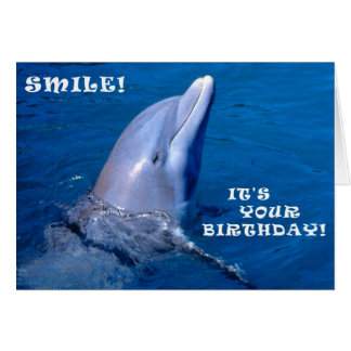 Dolphin birthday smile greeting card