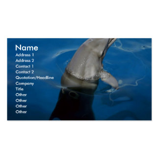 Dolphin Business Cards