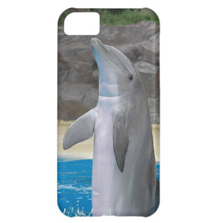 Dolphin Case For iPhone 5C