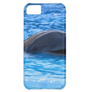 Dolphin iPhone 5C Cases