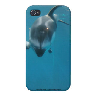 Dolphin case iPhone 4/4S cases