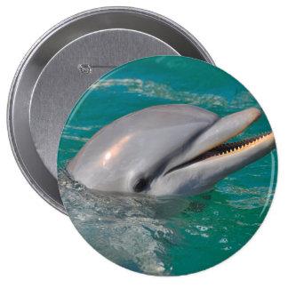 Dolphin Close Up 10 Cm Round Badge