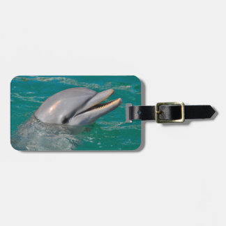 Dolphin Close Up Luggage Tag