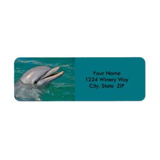 Dolphin Close Up Return Address Label
